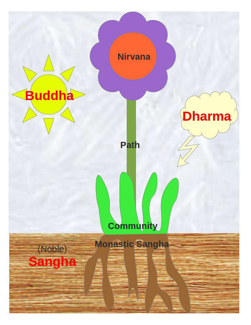 Growing The Dhamma Buddhist Life And Practice Buddha Ssana